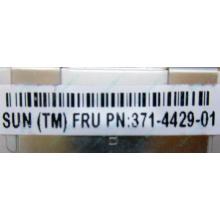 Серверная память SUN (FRU PN 371-4429-01) 4096Mb (4Gb) DDR3 ECC в Ессентуках, память для сервера SUN FRU P/N 371-4429-01 (Ессентуки)