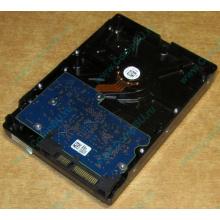 HDD 500Gb Hitachi HDS721050DLE630 донор на запчасти (Ессентуки)